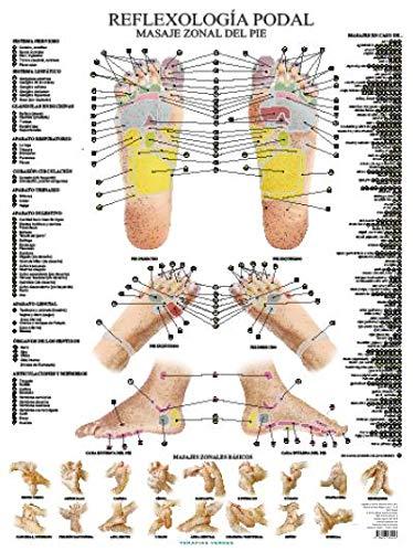 Reflexología podal (Terapias Láminas)