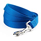 YUDOTE Nylon Dog Leads,Easy to Clean,Soft Lightweight Leash for Daily Walk with Puppies and Small Breeds, 1.5cm Wide 120cm Long, Blue