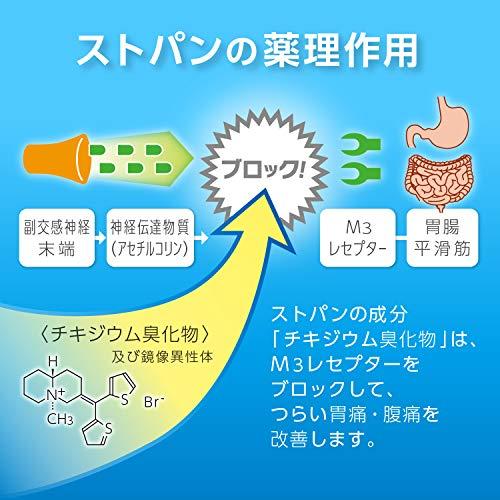【第2類医薬品】ストパン10カプセル※セルフメディケーション税制対象商品