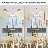 Albrillo LED Deckenventilator mit Beleuchtung - 91W Super Leise Ventilator mit Licht, 3 Farbtemperatur & 6 Windgeschwindigkeit auswählbar, Timer & Umkehrsfunktion, Ø 132cm 6 Flügeln für Wohnzimmer