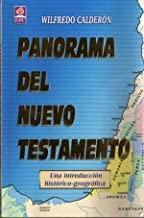 Panorama Del Nuevo Testamento (una introduccion historica-geografica)