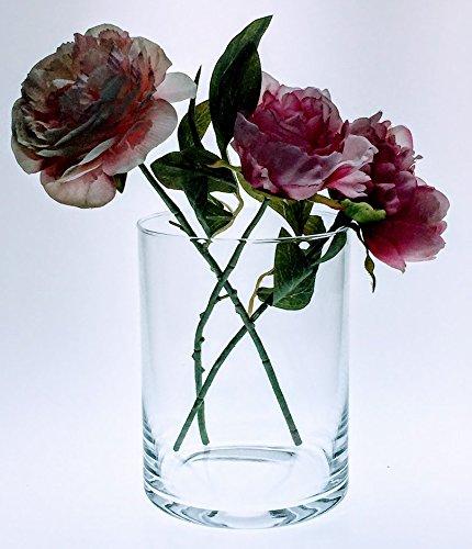 Solavia Haut clair Cylindre en verre Vase de fleurs 19 cm x 14.5 cm haute Bouquet | Conteneur