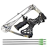 Archery Mini Compound Bow and Arrow Set 35lbs Complete Compound Bow Kits Right