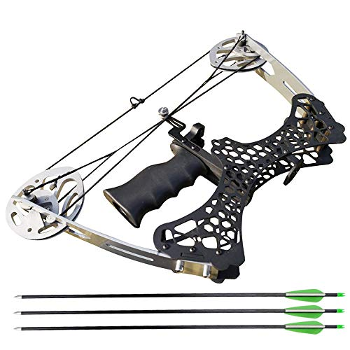 ZSHJGJR Archery Mini Compound Bow and Arrow Set 35lbs Complete Compound Bow Kits Right and Left Hand Bow for Adult Youth Hunting Shooting