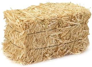 FloraCraft 2 Piece Straw Bale 1 Inch x 1.25 Inch x 2.5 Inch Natural