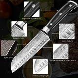 SKY LIGHT Damastmesser Santokumesser Damaskus Küchenmesser 67-Schicht Hand Gefertigt 7-Zoll, Japanischem Damaststahl AUS10V High Carbon Edelstahl w/Mantel - 3