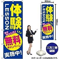 のぼり旗 体験LESSON 無料キャンペーン実施中 GNB-2131(受注生産)