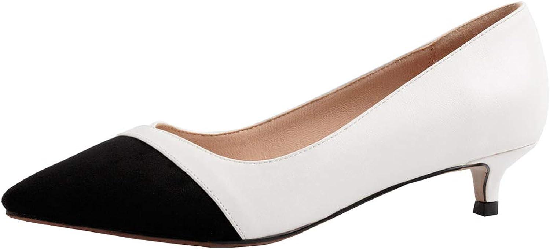 Artfaerie Womens Low Kitten Heel Pointed Toe Court shoes Slip on Work Office Pumps