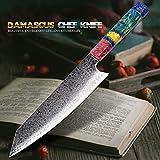 Nakiri cuchillo 67 Las capas de cocina del cuchillo del cocinero japonés Damasco acero de Damasco del cuchillo del cocinero de 8 pulgadas de Damasco cuchillo de cocina de madera solidificada HD afilad