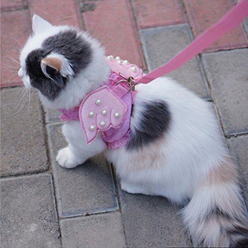 Ich 'pet Liebenswürdig, Komfort Cat & Dog & Kitty & Puppy Sicherheit Vest Walking Harness + passende Leine Leine Engel Flügel Kostüm Spitze löst Design, Large, rose