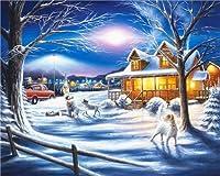 冬の雪景色DIY5Dダイヤモンドペインティングキット大人と子供用ギフトダイヤモンドモザイクアートクラフトリビングルームの壁の装飾(40x50cmスクエアダイヤモンド)