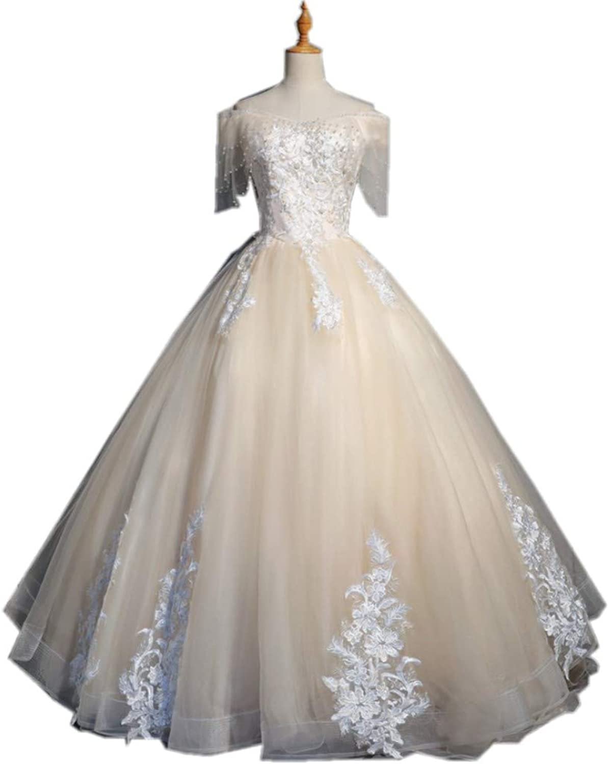 Darcy74Dulles Women\'s Champagne Appliques Ball Gown Evening ...