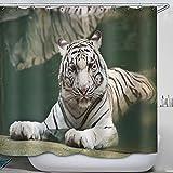 Cortina De Ducha De Tela Impermeable Animal Tiger Bañera Cortinas De Baño Incluye 10 Ganchos Antioxidantes De 71 X 71 Pulgadas