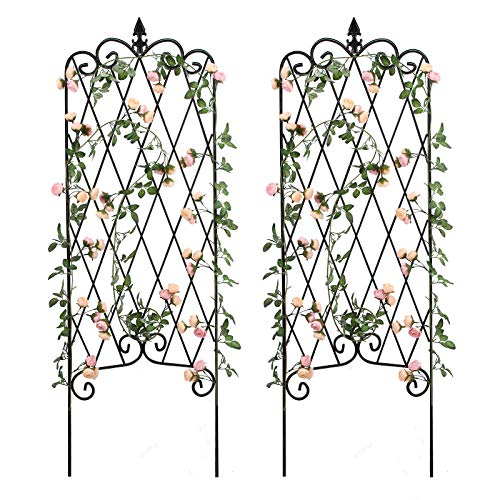 """Amagabeli 2 Pack Garden Trellis for Climbing Plants 60"""" x 18"""" Rustproof Black Iron Potted Vines Vegetables Vining Flowers Patio Metal Wire Lattices Grid Panels for Ivy Roses Cucumbers Clematis GT04"""