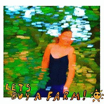 Let's Buy a Farm!