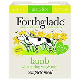 Forthglade 100 Percent Natural Dog Food Grain Free Complete Wet Dog Food Lamb with Spring Vegetables and Mint, 395 g, Pack of 7