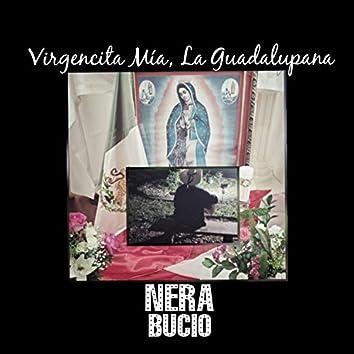 Madrecita Mía, La Guadalupana