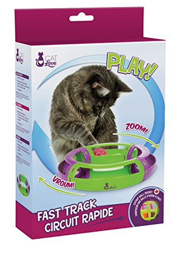 CATLOVE Jouet pour Chat Fast Track Circuit