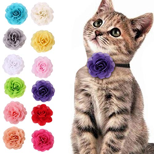 Felenny 12 Piezas Collares de Flores para Perros Y Gatos Corbata de Lazo para Mascotas Collares de Gasa Banda Elástica Alta Universal Accesorios de Aseo de Belleza Regalo Asequible para