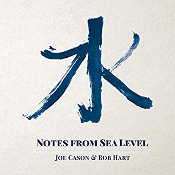 Notes from Sea Level