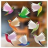 Stickers4 Vogel-Fensteraufkleber zum Schutz gegen Vogelschlag - Acht Große schöne exotisch Kolibri-Glasaufkleber, doppelseitig und selbstklebend zum Schutz gegen Vogelkollisionen - Acht...
