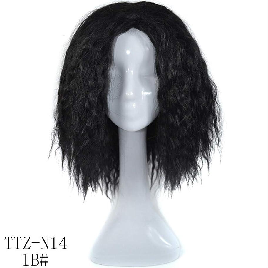 パニック十年責任者Yrattary ブラジルディープカーリーウェーブ人間の髪の毛の前頭かつら女性ナチュラルカラー20インチ複合毛レースのかつらロールプレイングかつらロングとショートの女性自然 (色 : 黒, サイズ : 20 inch)