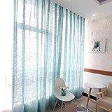 Transparente Vorhang Fertigprodukt einfache Moderne Wohnzimmer Schlafzimmer Tüll Vorhang Trennwand 2 Stück-Blau_190 x 270 cm (B x H) x 2