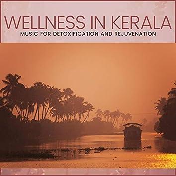 Wellness In Kerala - Music For Detoxification And Rejuvenation
