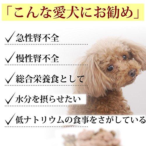 不全 犬 食事 腎