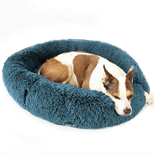 Bow Wow Pet Ultra Plush Shaggy Round Donut Dog Pet Bed, Turquoise