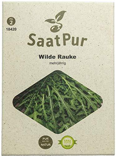 SaatPur Wilde Rauke Samen, Saatgut für ca. 250 Pflanzen