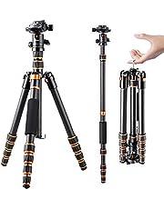 K&F Concept 155 cm Kolfiber Kamerastativ, B210 Professionellt lätt Kompakt Stativ med 2 Sektioner Centralkolumn 360 Graders Bollhuvud och Bärväska för Digitalkamera/Videokamera