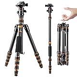 K&F Concept Trípode para cámara BA225, Trípode Profesional 360 Grados Fibra de Carbono 61 Pulgadas para cámara, videocámara