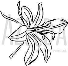 Azeeda A5 'Orchid Flower' Wall Stencil / Template (WS00014735)