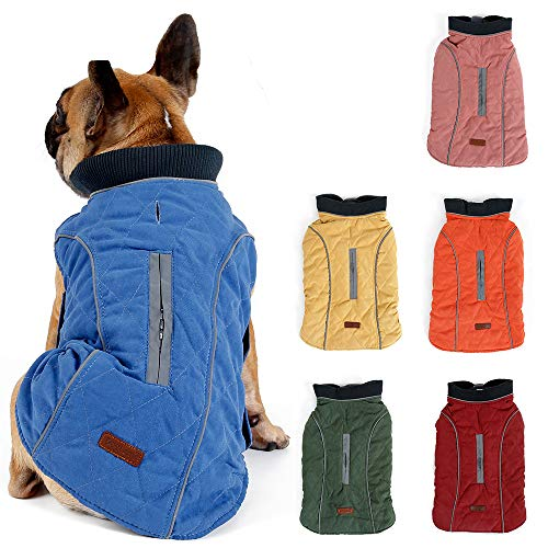 Hundemantel Winter Warme Jacke Weste, 7 Größen für Kleine Mittlere Große und Riesige Hunde, Winddicht Schneeanzug Hundekleidung Outfit Weste Haustiere Bekleidung (XXL, BLAU)