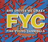 She Drives Me Crazy by Fine Young Cannibals