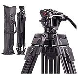 Regetekプロフェッショナルビデオカメラ三脚システム、65インチヘビーデューティアルミ製調整可能三脚スタンド、キヤノンニコンDVビデオカメラDSLRフォトスタジオ用の液体パンヘッドとキャリーバッグ付き