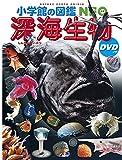 小学館の図鑑NEO 深海生物 DVDつき (小学館の図鑑・NEO 26)の画像