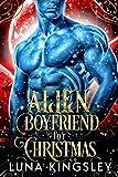 Alien Boyfriend for Christmas (A Sci-Fi Alien Romance)