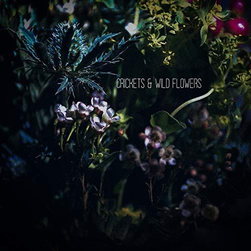 Crickets & Wild Flowers (Instrumental)