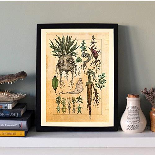 LLXHGHarry Fan Art Illustration Mandrake Dekor Leinwand Malerei Wandbild, Niedliche Mandrake Pflanze Poster Druck Kinderzimmer Dekor-30X40Cm Kein Rahmen