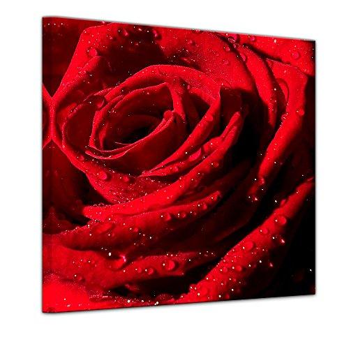 Wandbild - Rote Rose mit Wassertropfen - Bild auf Leinwand 60 x 60 cm - Leinwandbilder Bilder als Leinwanddruck Pflanzen & Blumen Natur rote Blüte mit Wasserperlen