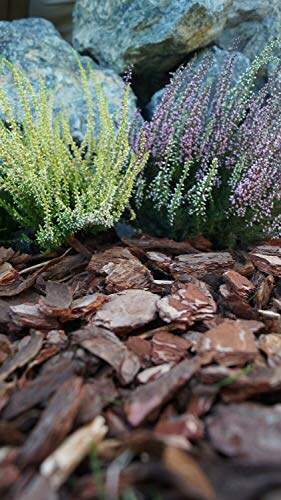 Wooden bark Chips Wood Chippings Mulch Landscaping Clean 80 L QUALITY 20-50...