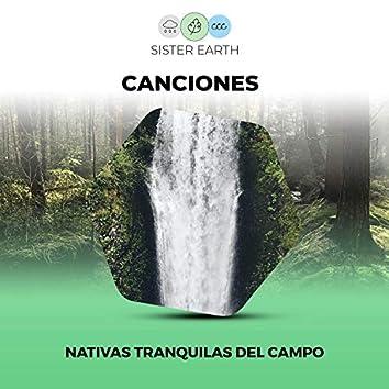 Canciones Nativas Tranquilas del Campo