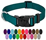 Country Brook Design - Vibrant 25 Color Selection - Deluxe Nylon Dog Collar (Large, 1 Inch Wide, Teal) - Made in The U.S.A.