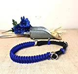 side pull hackamore bitless bridle attachment electric blue and black horse tack