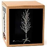 Gartenpirat LED-Baum für außen 160 cm 200 LED warmweiß Lichterbaum