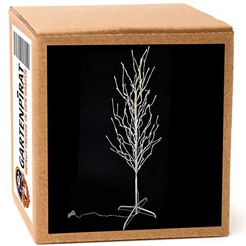 Gartenpirat LED-Baum für außen 160 cm 200 LED warmweiß Lichterbaum weiß Outdoor Weihnachten