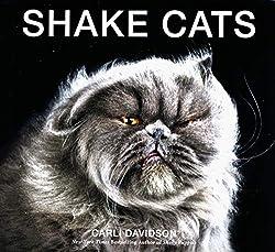 shake-cats-carli-davidson