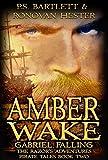 AMBER WAKE - Gabriel Falling: The Razor's Adventures Book Two (The Razor's Adventures Pirate Tales 2)